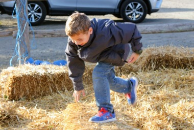 Benji in the hay