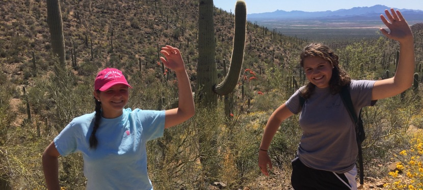 Park Hopping Ep. 1: Cacti and Canyons